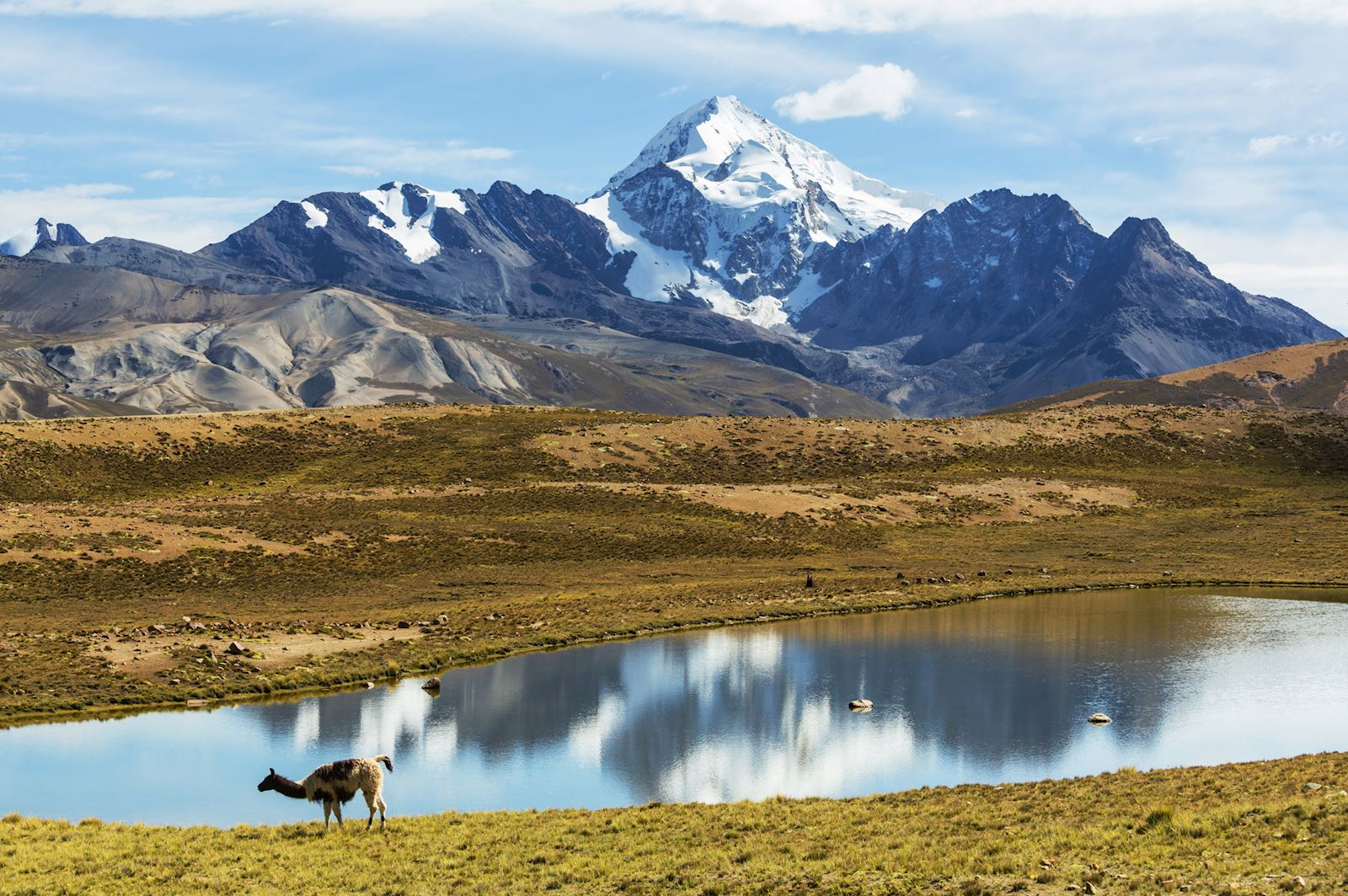 הרים בבוליביה