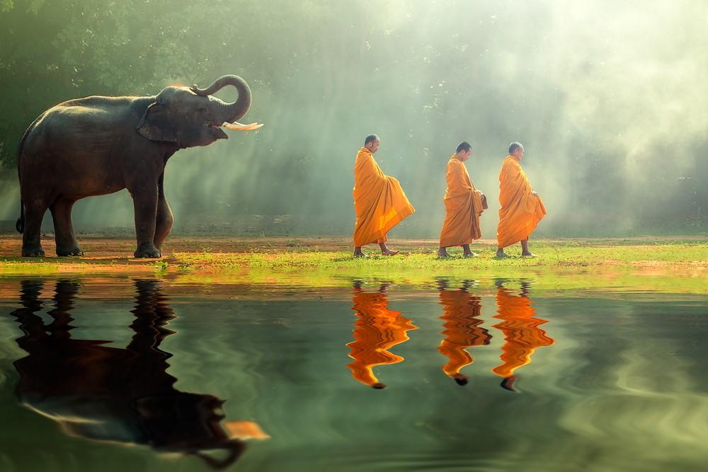 תאילנד למשפחות 1